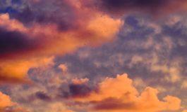 #pcpercapre:The cloud strikes back!