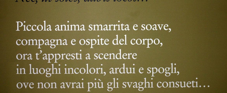 #TerzaPagina: Marguerite Yourcenar, Le Memorie di Adriano