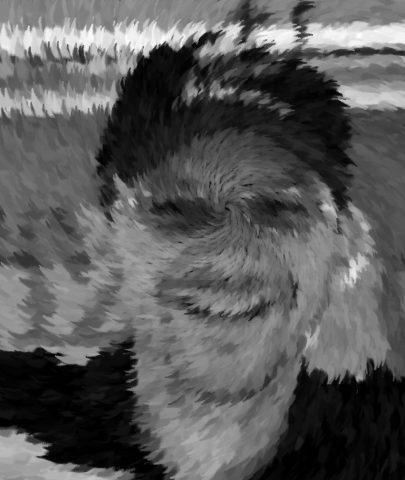 Il Fantasma del Pincio